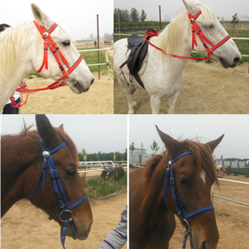 Horse Riding Bridle Halters Horse Head Collar PVC Leather Horse Equestrian Horse Rider Equipment Equitation Equipement Cheval