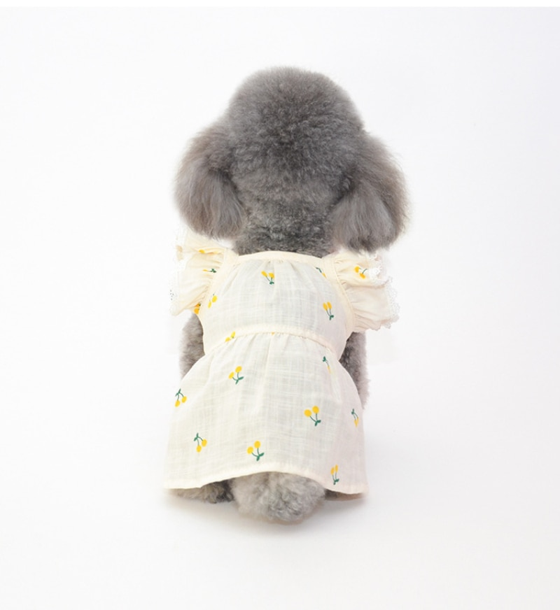 Travel Dog Dress Cap Summer Cat Dog Dresses Skirt Hat Pet Clothing Puppy Yorkshire Pomeranian Poodle Bichon Dog Clothes Dropship  - buy with discount