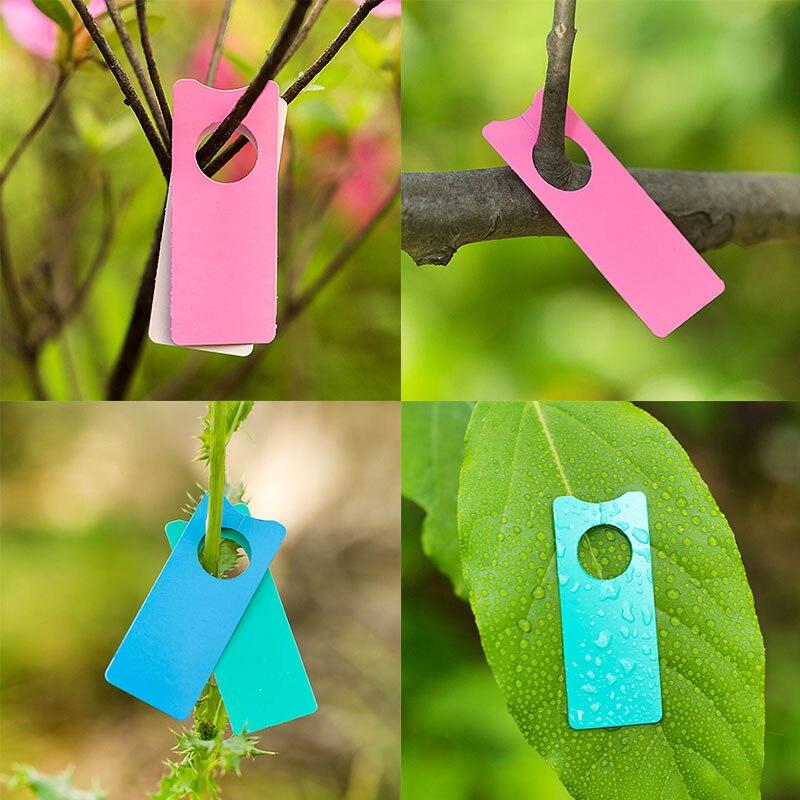 100buc / 10buc etichete portabile multifuncționale din plastic, - Produse de grădină - Fotografie 4