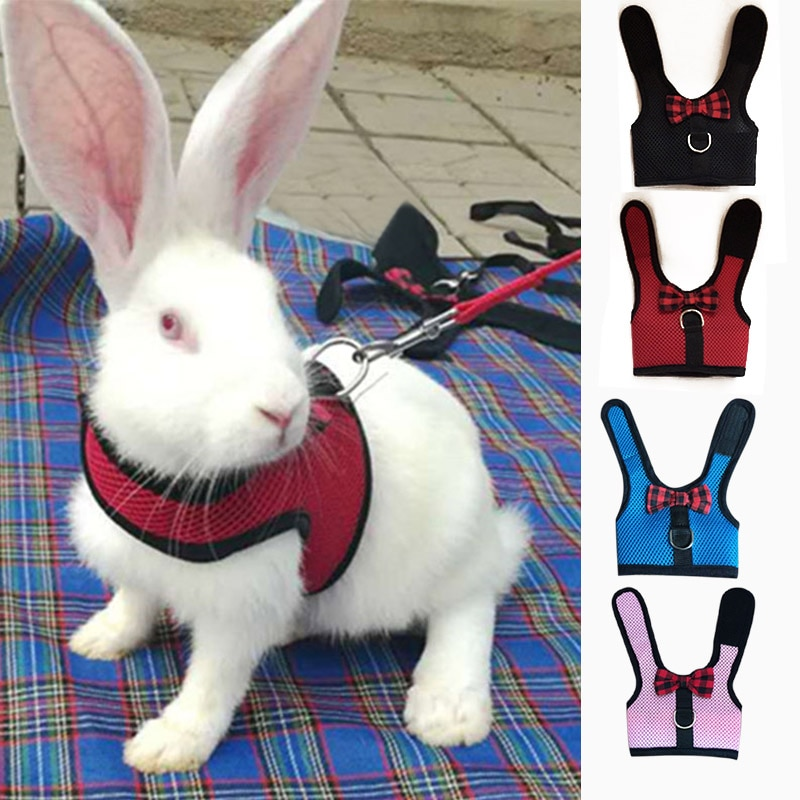 Pet Mesh Soft Harness With Leash Small Animal Vest Lead for Hamster Rabbit Bunny Small animal pet accessories Belt lead set