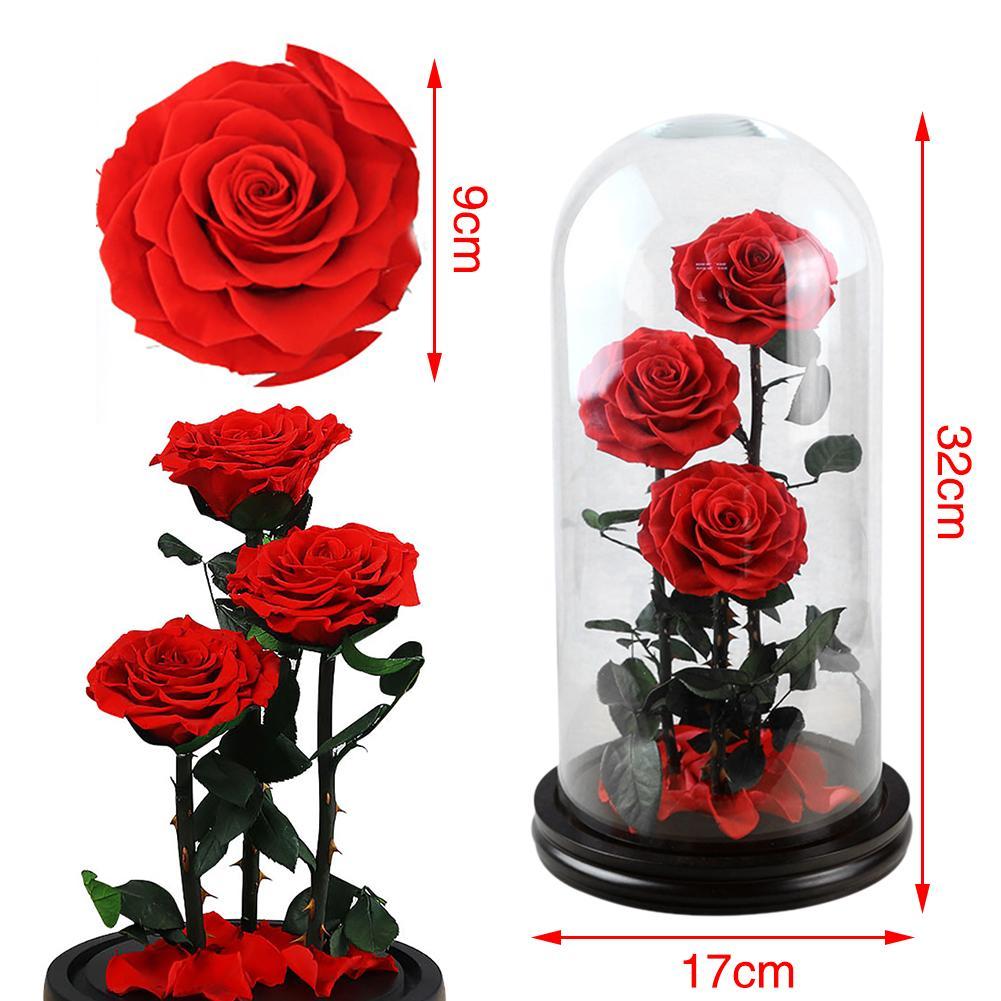 Cubierta de cristal rosa roja multicolor innovadora e innovadora con flores secas frescas preservadas para decoración de cumpleaños y San Valentín