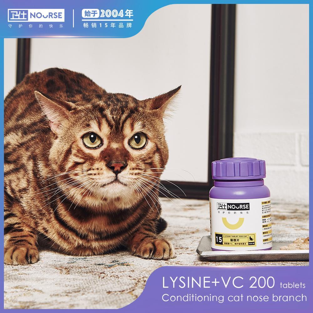 Levantar um gato gato nariz água de amônia ramo ramo de lisina suplemento nutricional para regular o nariz gato 100g produto nutricional
