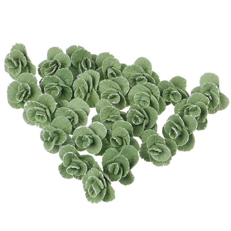 5 uds coliflower col china verde Mini casa de muñecas pequeña Linda hecha a mano arcilla polimérica verduras 112 casa de muñecas