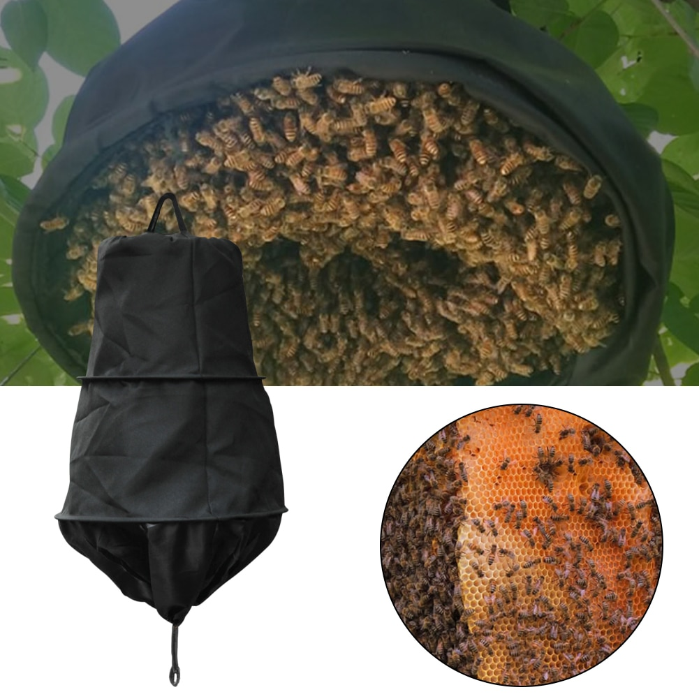 beekeeping tools protective cover base bee queen king cage accessories fertility king pedestal guard cage cover bee equipment 10 New Black Swarm Trap Swarming Catcher Black Bee Cage Wild Bee Recruit Cage Beekeeping Catching Tool Beekeeping Equipment