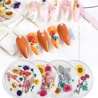 1 box nail dried flower decoration jewelry natural flower leaf sticker 3d nail art design small daisy flower nail decoration