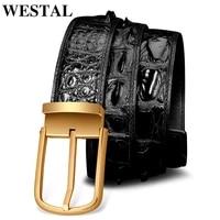 westal crocodile leather mens belt for jeans high quality belt gift for man waist belts buckle man belts brand luxury designer