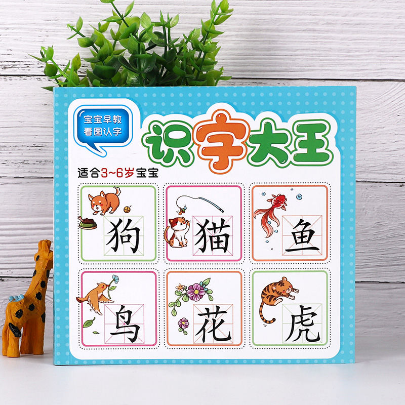 927 Word Read Picture Card Children Learn Chinese Characters Notes Pinyin Version Enlightenment Early Education Card Book Libros