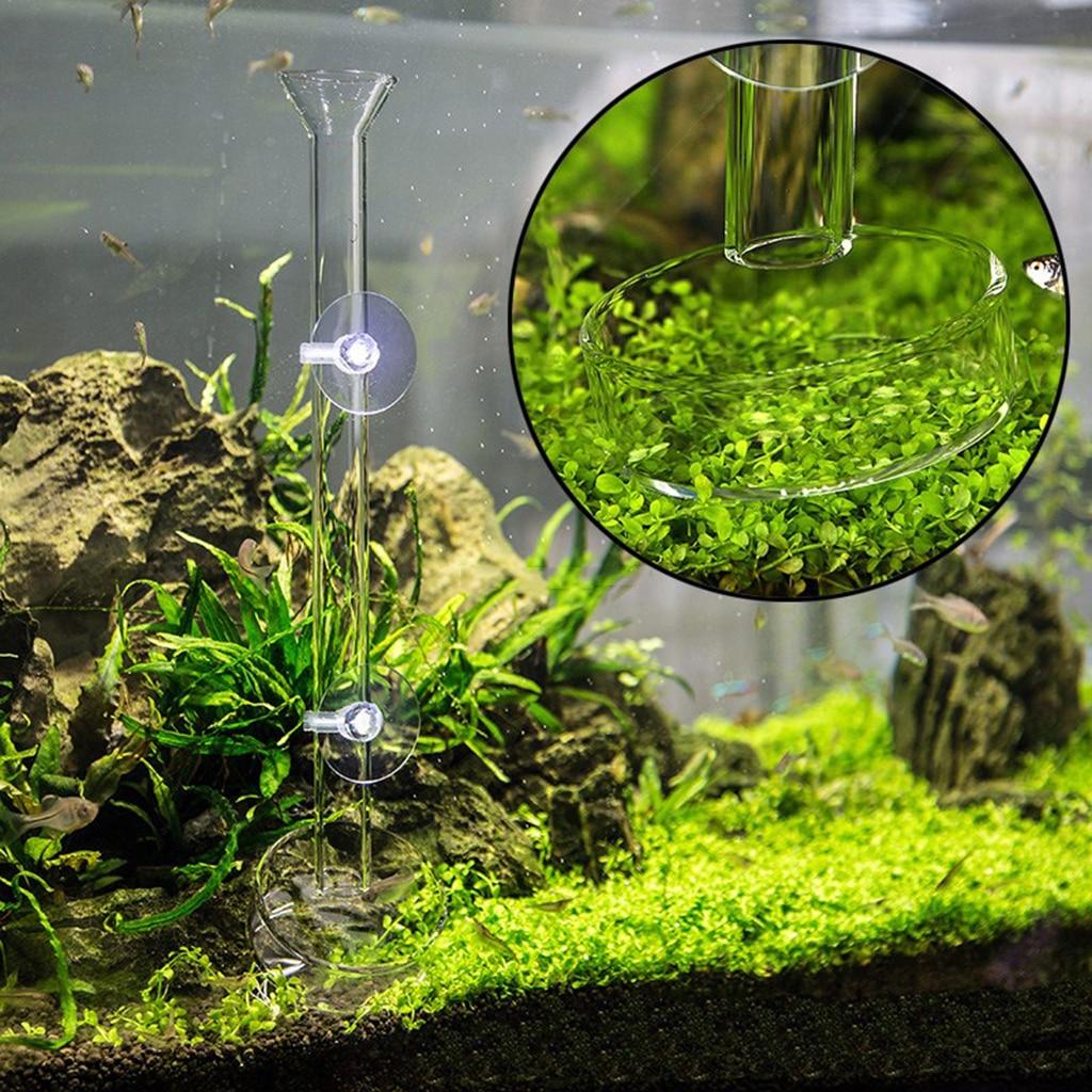 Aquarium Fish Tank Shrimp Feeding Food Dish Feeder Container Pet Supplies Fish Aquatic Pets