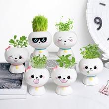 Créatif en pot mini mignon petite plante bureau bureau plante verte décoration dintérieur simple en céramique succulente petit pot de fleur