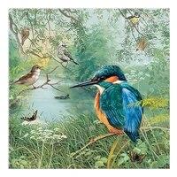 Bricolage 5D strass mosaique resine plein diamant peinture kingfisher point de croix Kits decoration de la maison diamants broderie oiseau