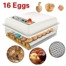 110V/220V 계란 부화장 농장 인큐베이터 Brooder 기계 계란 해쳐 치킨 자동 계란 인큐베이터 터너 조류 메추라기 Brooder