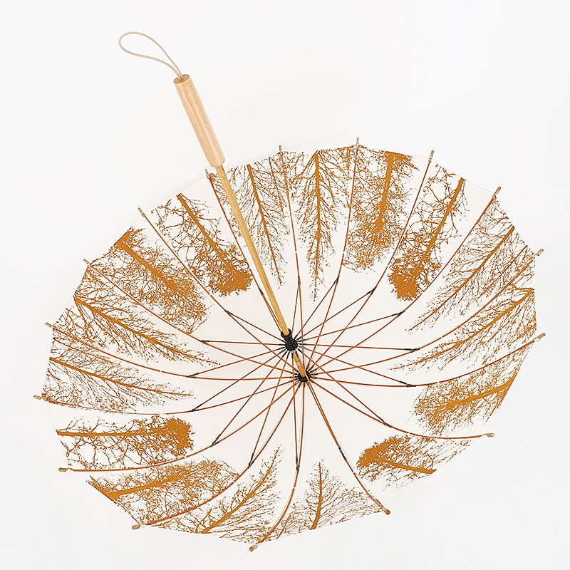 16 Bone Clear Umbrella Retro Literary and Artistic Long Handle Wooden Umbrella Small Fresh Birch Windbreak  Cute Umbrellas