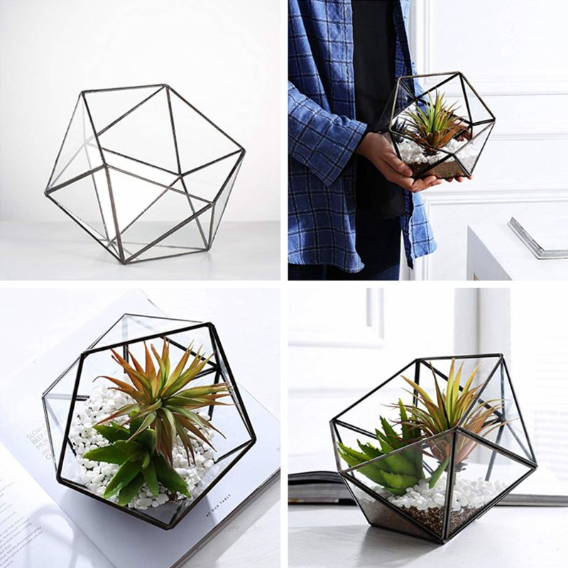 Glass Glass Terrarium Storage Box Jewelry Holder,Glass Geometric Terrarium Tabletop Succulent Plant Box Planter Holder /Gold)(No