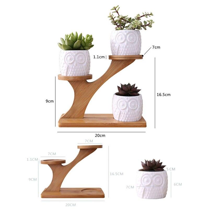 Planta suculenta blanca Simple de cerámica maceta soporte búho calabaza Treetop en forma de