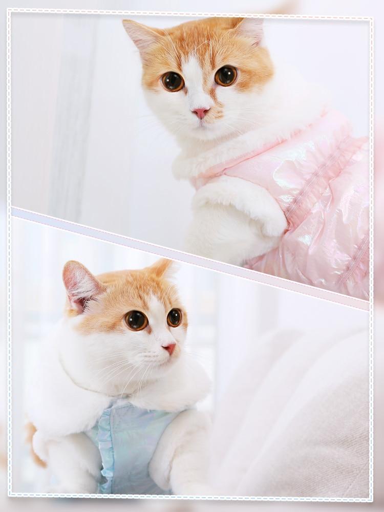 Jaqueta de inverno gato hoodie à prova de vento traje pet cat wear jaqueta moda traje camisola hondenjas hoopet gato suprimentos jj60mj