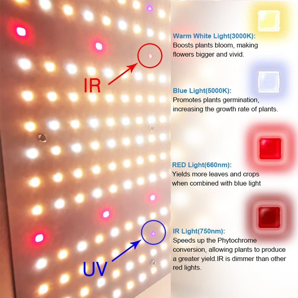 Greenhouse Phyto Lamp 6000W Samsung LM301B LED Quantum Grow Light Tech Board Indoor Hydroponics Growing System Meanwell Driver enlarge