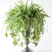 65cm 5 fork large artificial flower tropical chlorophytum plants fake airplant grass bouquet plant wall hanging for home decor