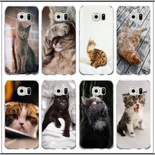 Soft TPU Silicon Phone Case for Samsung Galaxy Note 2 3 4 5 8 S3 S4 S5 Mini S6 S7 S8 S9 Edge Shell Coque Kitten Black Cat Animal