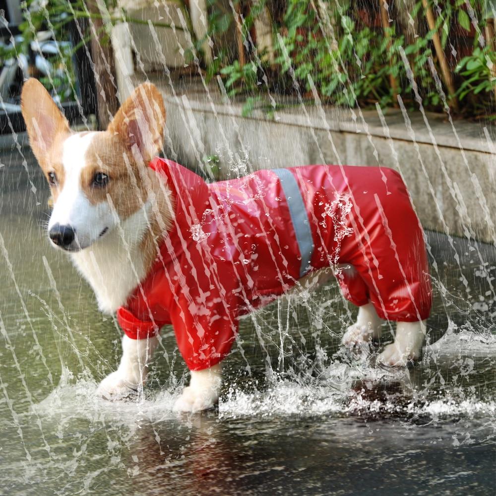 애완 동물 강아지 방수 비옷 점프 슈트 반사 레인 코트 선 스크린 개 작은 개 애완 동물 용품을위한 야외 의류 재킷