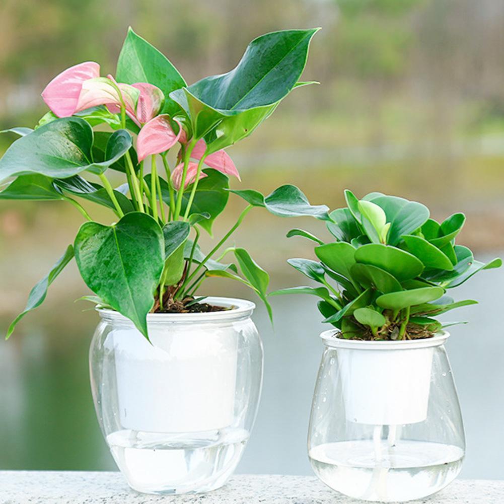 Auto rega planta vaso de flor recipiente de água plástico plantador casa ferramenta jardim frete grátis