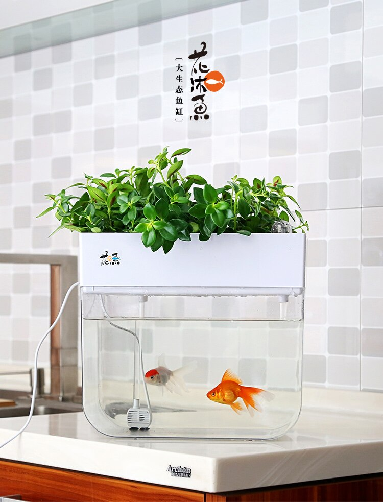 Water Free Ecological Goldfish Tank Living Room Home Desktop Small Symbiosis System Flower Muzy Lazy Aquarium Fish Box Aquariums Tanks Aliexpress