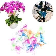 30 шт. милые зажимы для орхидеи бабочки зажимы для растений садовые Цветочные лозы опорные зажимы