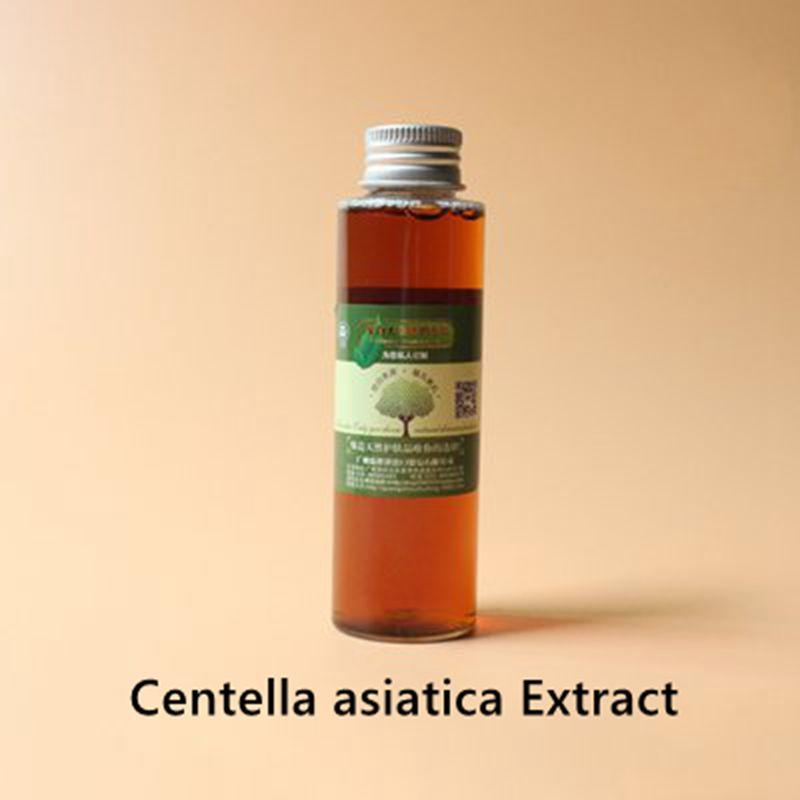 Extracto de Centella asiatica que protege la piel, la oxidación, reduce el peso y la hinchazón, anti-alergia, la sangre circulati