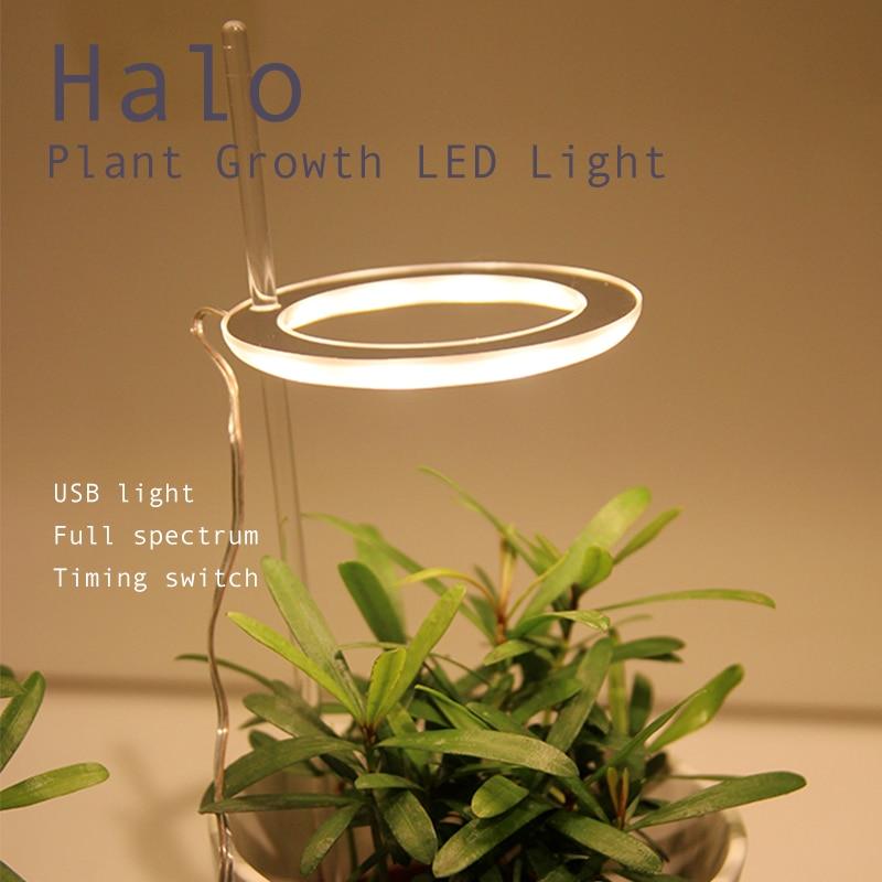 Кольцо для роста растений светильник USB 5V завод светильник роста ландшафтный светильник, ing, комнатных растений и карликовые деревья цветы