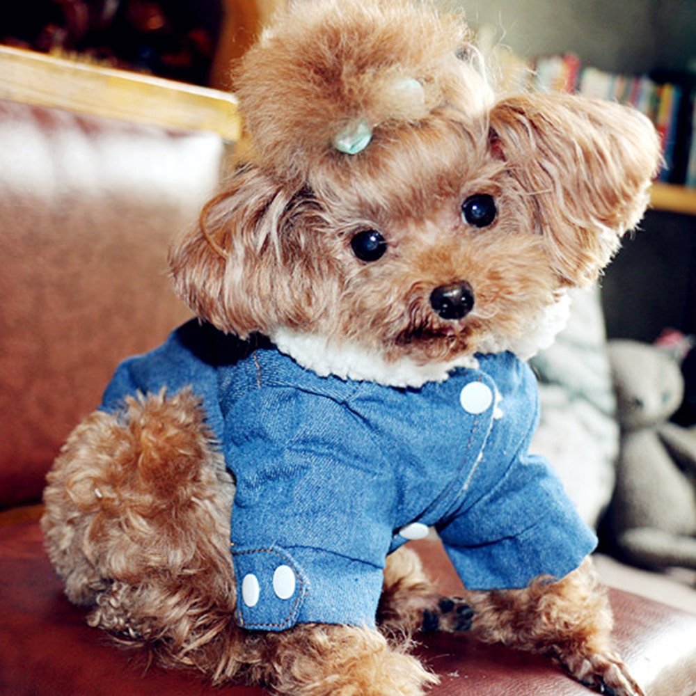 Ropa cálida para perros y mascotas, ropa de invierno para cachorros, chaqueta para perros, atuendo para mascotas, abrigo vaquero, Disfraces para ropa de mascotas
