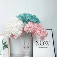 15 20cm head real dried natural preserved fresh hydrangea flowers branches eternal rose forever floral with pole home decor