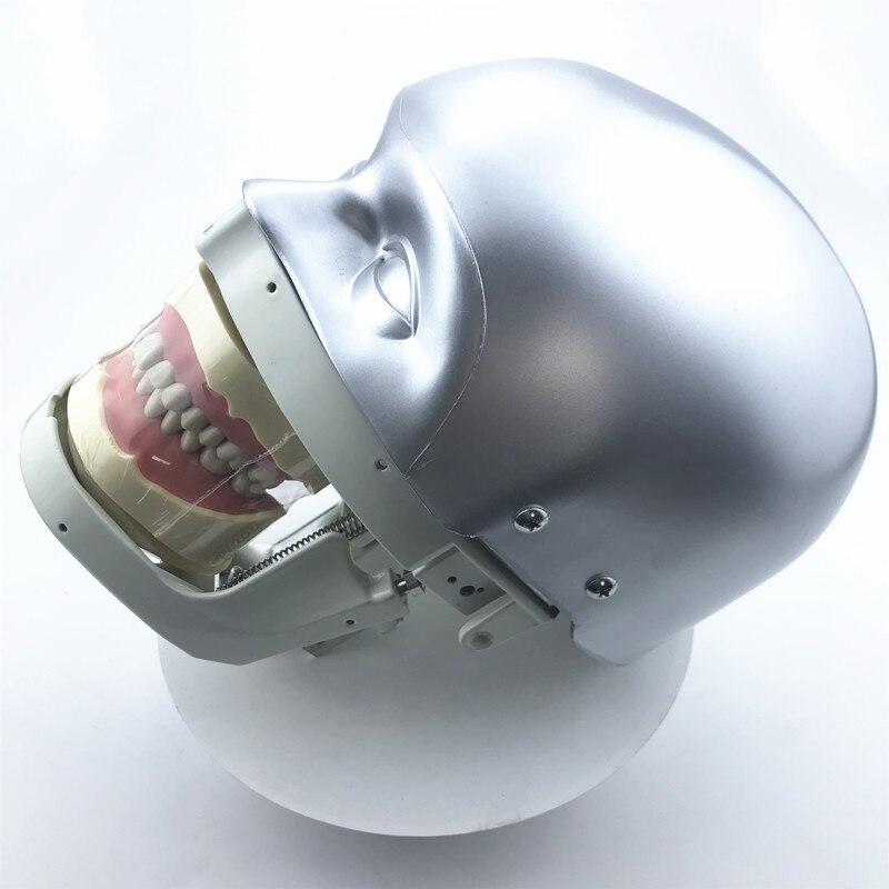 Стоматологический симулятор, модель