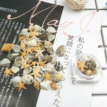 3D Natural Nail Art Decoration Mini Conch Shells Starfish Sea Beach Ornaments Manicure Tools For DIY