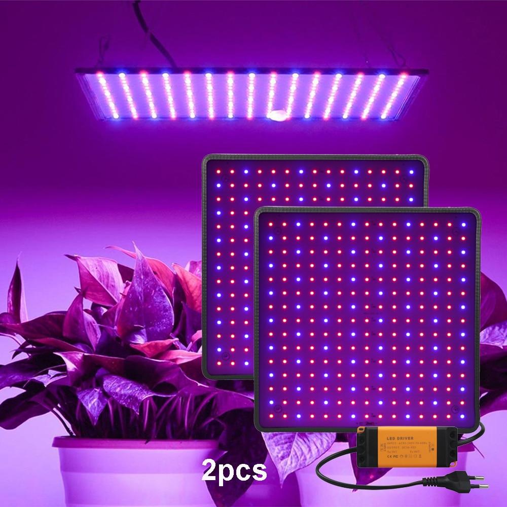 Phytolap luz LED de cultivo 1000W, iluminación de plantas de espectro completo Fitolampy para plantas, flores de cultivo, caja de tienda de cultivo de flores