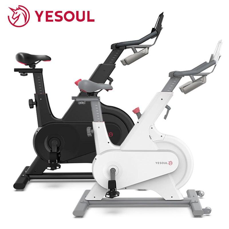 Bicicleta de Spinning YESOUL con Control magnético para el hogar, bicicleta de ejercicio Ultra silenciosa para interiores, equipo de Fitness para pérdida de peso, bicicleta de ejercicio M1