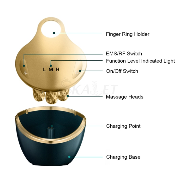 Mini 4 In 1 Skin Rejuvenation Facial Lifting RF EMS with 4D Massage Head