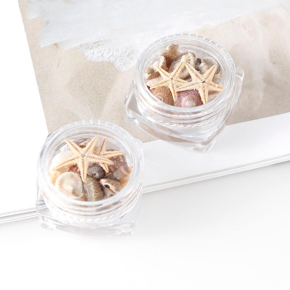 1/2/5 caja Natural Mini conchas mar estrellas de mar adornos de playa herramientas de manicura para DIY Epoxy molde accesorios para manualidades