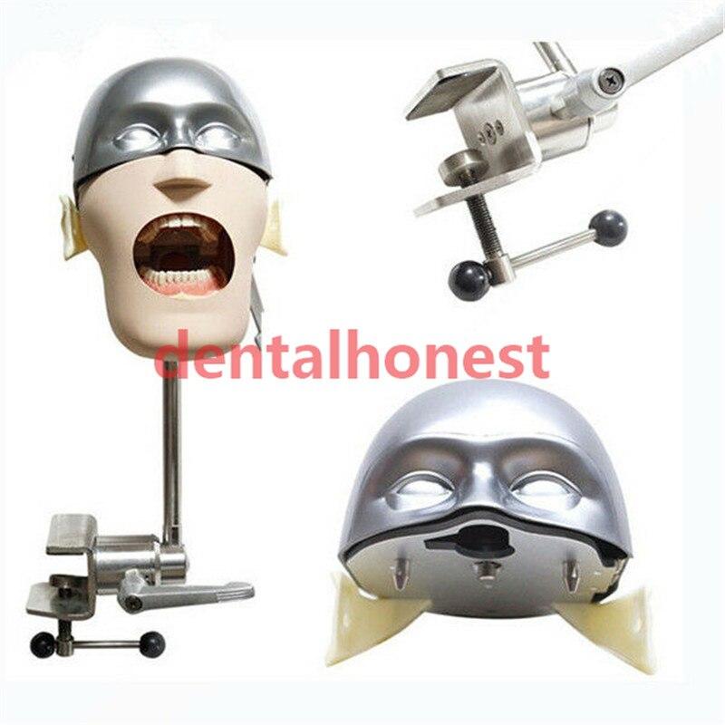 Stainless steel head model NISSIN Dental manikins and models Phantom Head Dental teaching model