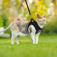 breathable cat sling summer mesh pet sling kitty and puppy vest adjustable and easy to control reflective cat vest