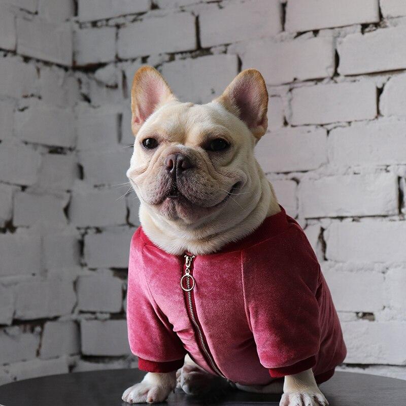 Зимнее пальто для собаки в виде мопса во французском стиле, куртка, одежда для собаки в виде пуделя, померанского шнауцера, одежда для домашн...