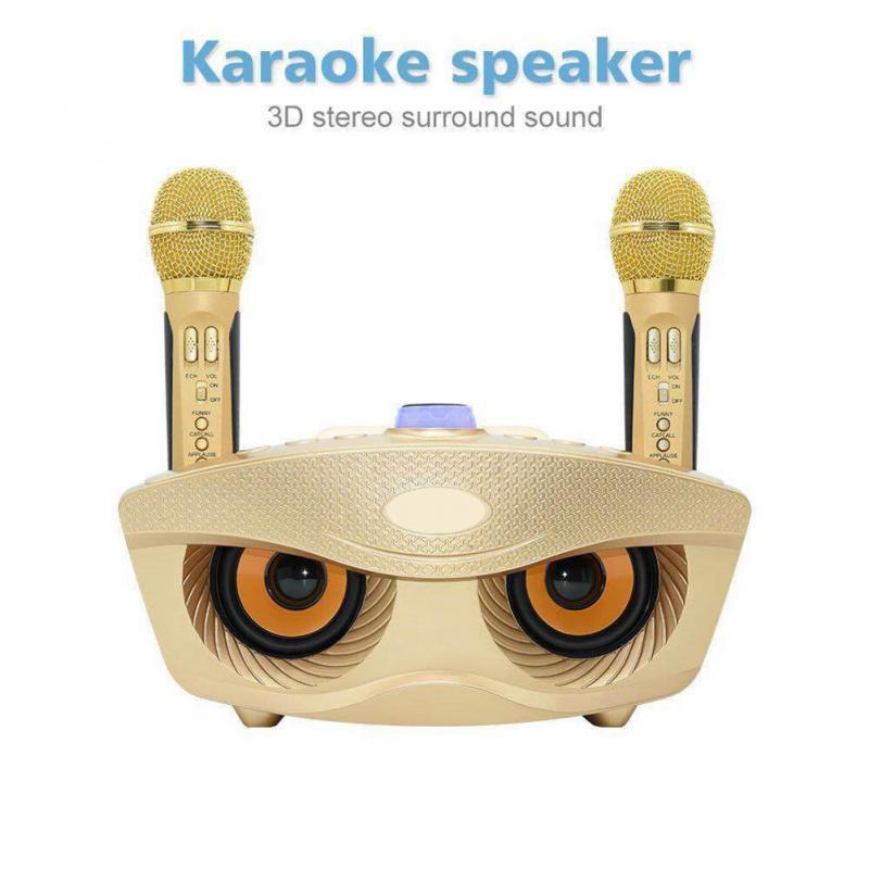 2 في 1 سماعة لاسلكية محمولة مع 2 ميكروفونات للمنزل حفلة KTV مكبر صوت لجهاز الكاريوكي بلوتوث متوافق مع ميكروفون الكاريوكي