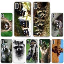 Funda de piel suave, mapache Kawaii para bebés, mapache estampado para iPhone 11 Pro 4 4S 5 5S SE 5C 6 6S 7 8X10 XR XS Plus para iPod Touch