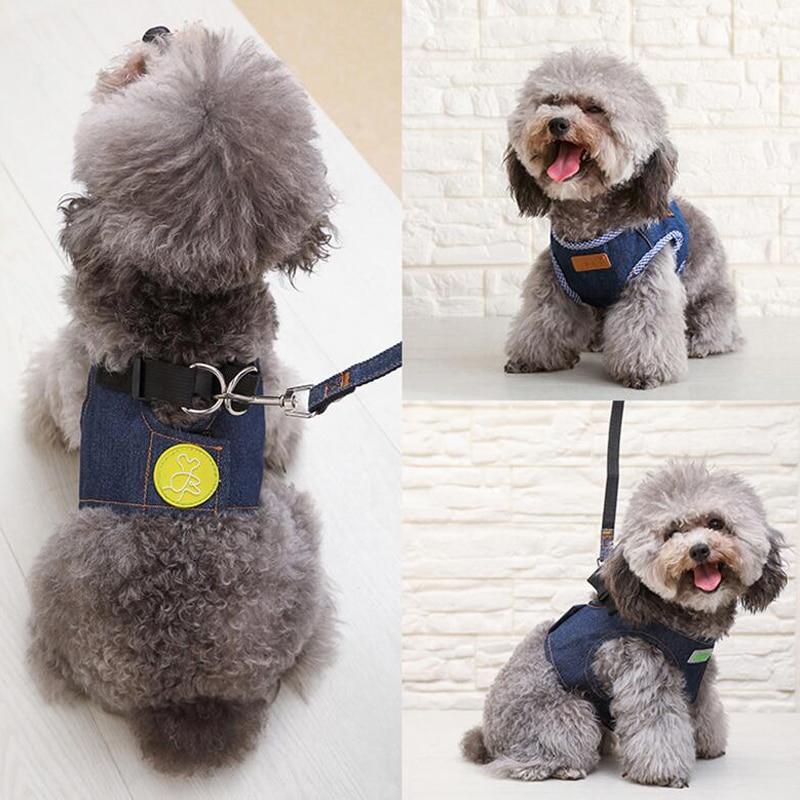Mascota perro gato arnés conjunto de correa pequeño cachorro mascota chaleco para perros pequeños medianos Chihuahua yorkkie Teddy S M L XL