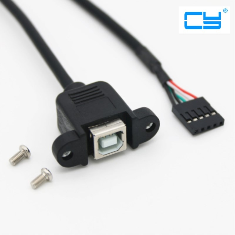 2 uds/20 cm USB 2,0 tipo B conector hembra de montaje en Panel a paso 2,0mm 5pin vivienda PCB placa base Cable Dupont
