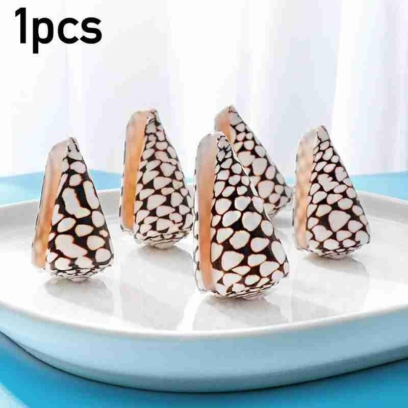 Cono de mármol Natural de 7-9cm para decoración del hogar, concha de...