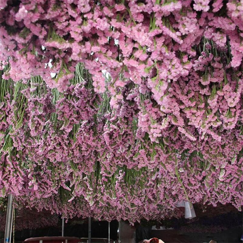 Rosa claro 45-50CM 100-150g DIY boda atrezo para fotografía de fiesta pura planta natural flores secas café biblioteca decoración del hogar