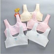 8-16Y Kids Bras for Girls Vest Teenage Underwear Training Bras Small Vest Puberty Clothing Cute Cart