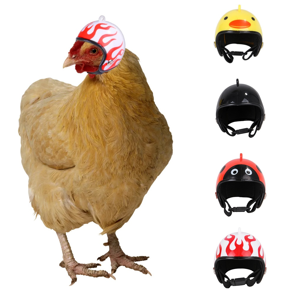 Креативный жесткий шлем для маленького питомца, головной убор для перепелов, утки и птицы, шлем для цыплят, защитный шлем для головы