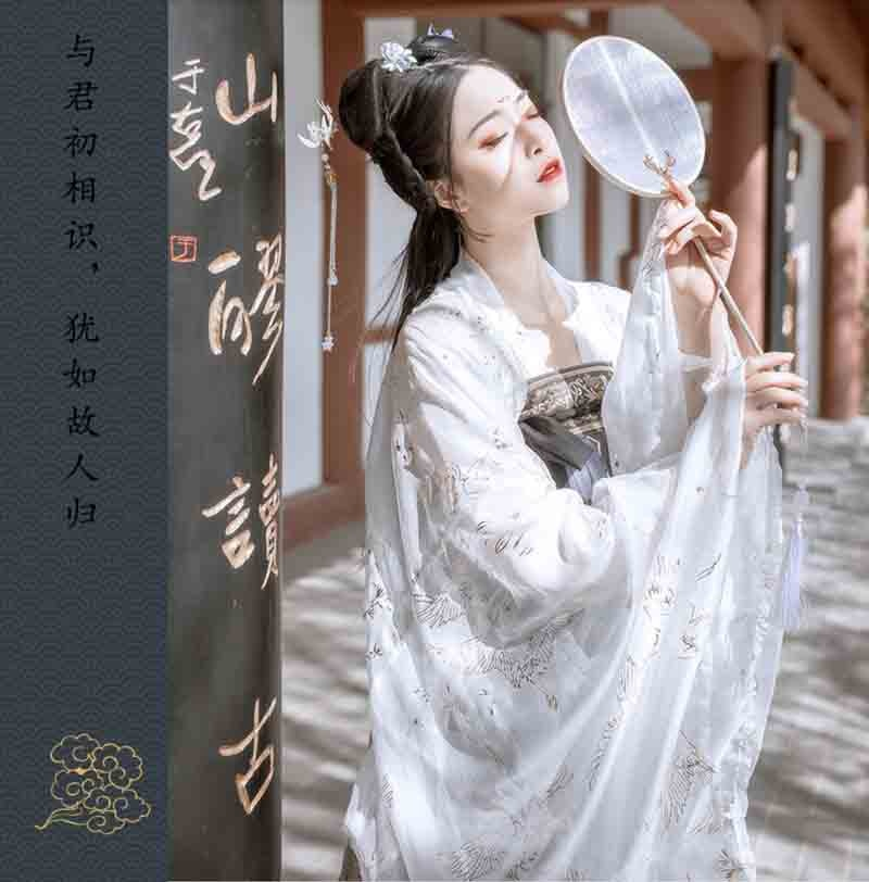 Chinese Hanfu Ancient Traditional Vintage Black Dress Fantasia Female Cosplay Costume Women Summer Gift For Lady Plus Size