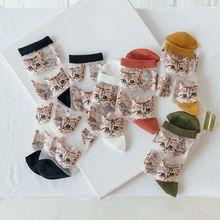 2020 New Summer Women's Socks Kawaii Sweet Cute Funny Cat Ladies Crystal Happy Japanese Transparent Cartoon Silk Sox for Girl