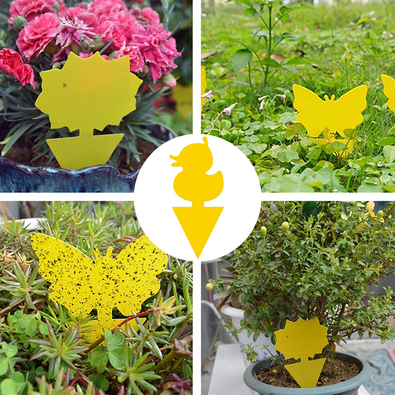 15PC Tablero adhesivo de doble cara para el jardín... trampa para insectos...